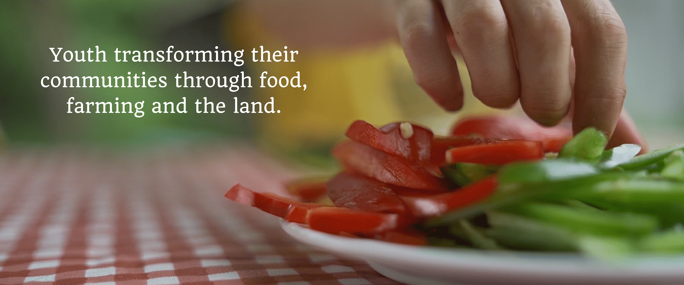 The Food Literacy Project